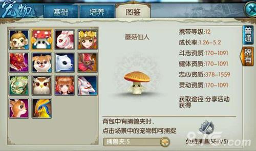 诛仙手游蘑菇仙人