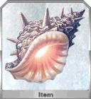 追忆的贝壳