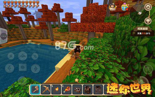 迷你世界红树林地图图片2
