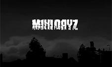 minidayz试玩视频 迷你DAYZ演示视频
