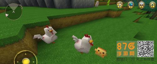 迷你世界鸡吃什么食物繁殖图片