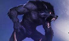 狼人杀狼人怎么玩视频 狼人玩法视频解说