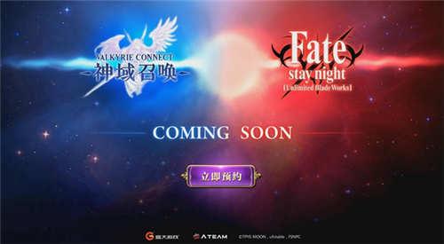 《神域召唤》Fate概念站引热议