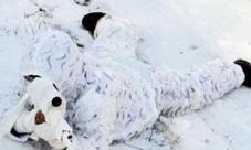 荒野行动雪地吉利服怎么获得 雪天模式吉利服获取