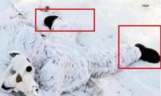 荒野行动雪地模式雪地靴怎么获取 雪地靴获取方法