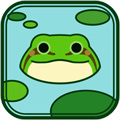 青蛙everyday