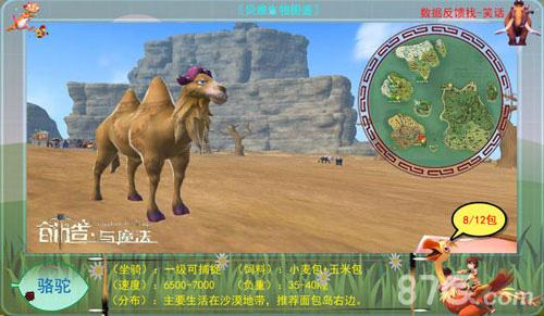 创造与魔法骆驼怎么抓