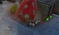 方舟生存进化怎么孵蛋 恐龙蛋孵化方法介绍