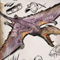 雙型齒翼龍