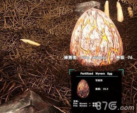 方舟生存进化火龙蛋