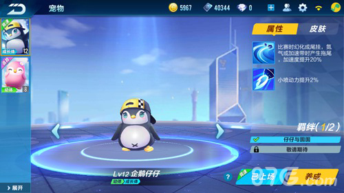 QQ飞车手游宠物怎么进化5