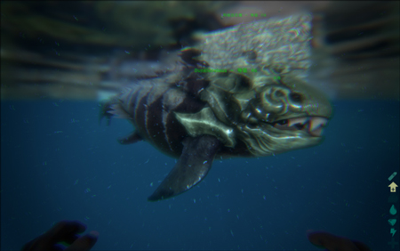 壁纸 动物 海底 海底世界 海洋馆 水族馆 鱼 鱼类 450_282