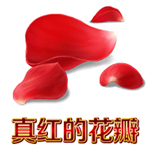 FGO真红的花瓣