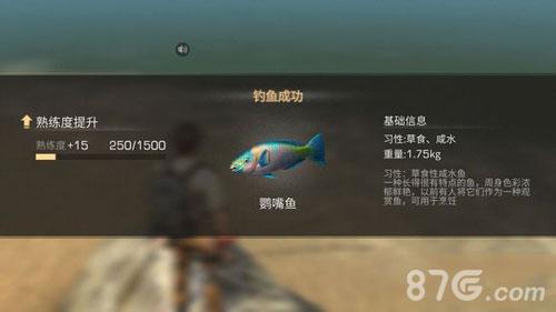 明日之后鹦嘴鱼