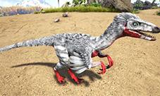 方舟生存进化伤齿龙吃什么 伤齿龙驯服饲料介绍
