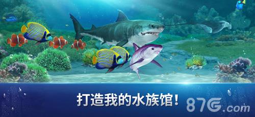 Fishing Strike截图6