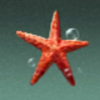 呂宋棘海星