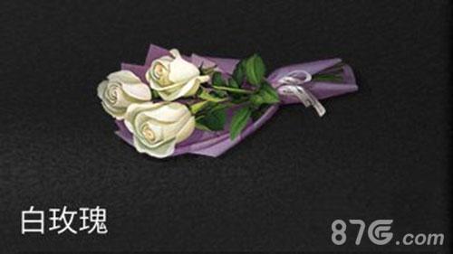 明日之后白玫瑰