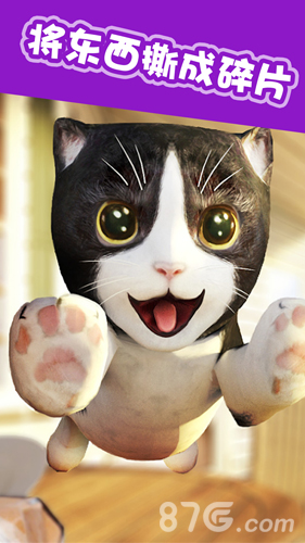 猫猫模拟截图4