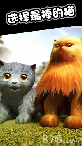 猫猫模拟截图5