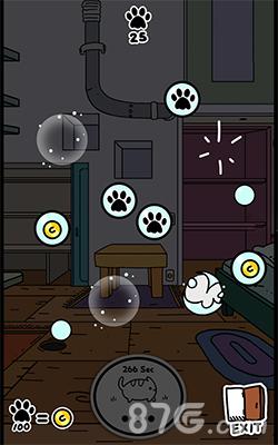 小偷猫戳泡泡