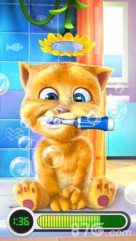 我的金杰猫牙膏