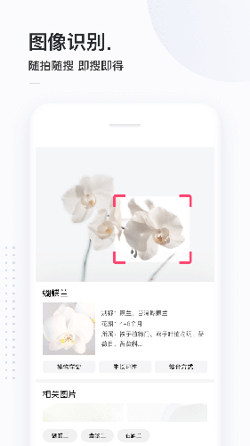 簡單搜索app截圖4