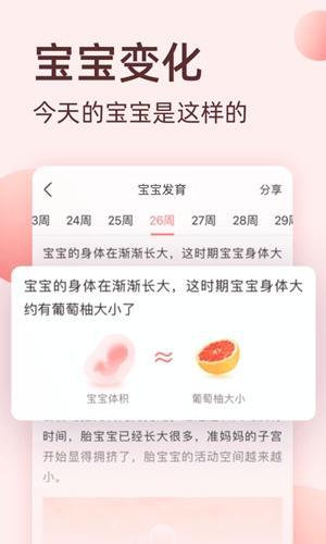 柚寶寶app截圖4