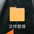 手機騰訊視頻文件管理