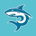 鲨鱼影视app