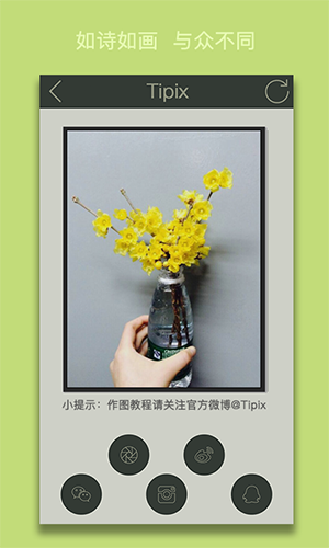 Tipix安卓截图4