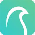 云鹊医app