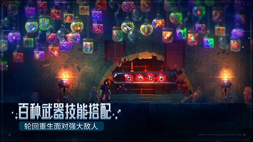 Dead Cells中文版截图3