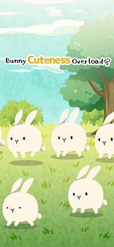 可爱到让人心碎的兔兔截图1