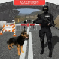 邊境巡邏嗅探犬