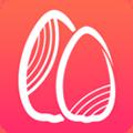 瓜子淘app
