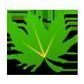 綠色守護app
