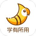 斑鳩職業app