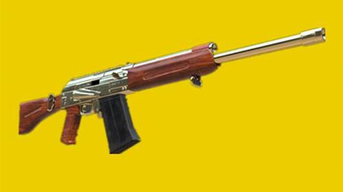 和平精英換彈最慢的槍械6