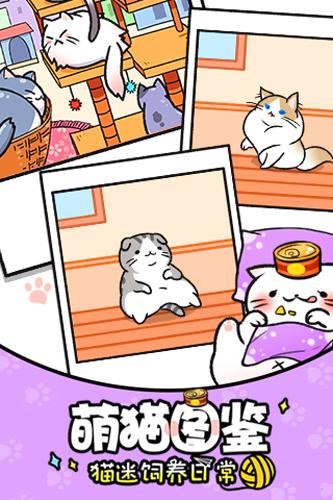 猫咪公寓手游截图4