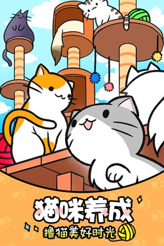 猫咪公寓手游截图5
