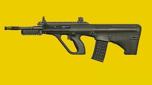 和平精英饱受争议的枪械2