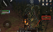 明日之后玉米怎么获得 材料玉米获取方法介绍