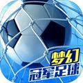 夢幻冠軍足球