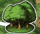 FGO森林