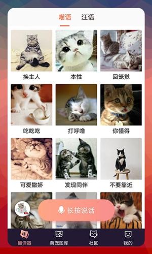 猫语翻译器app截图1