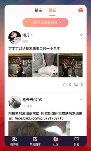 猫语翻译器app截图4