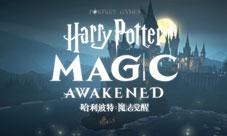 哈利波特:魔法觉醒评测:原来魔法还能这样玩