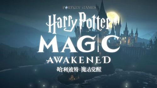 哈利波特:魔法覺醒評測圖1