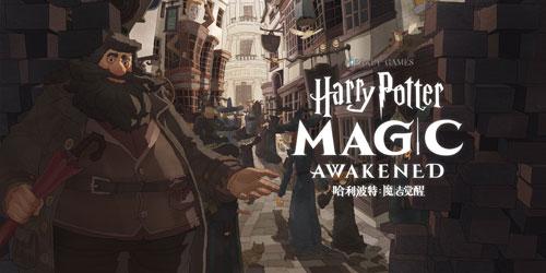 哈利波特:魔法覺醒評測圖23